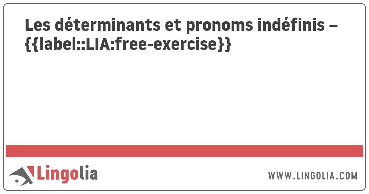 Les Determinants Et Pronoms Indefinis Exercices
